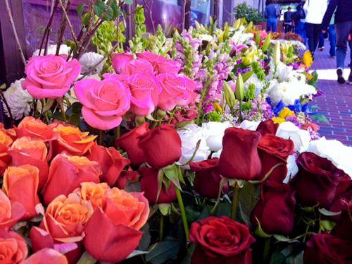 Flowersonstockton