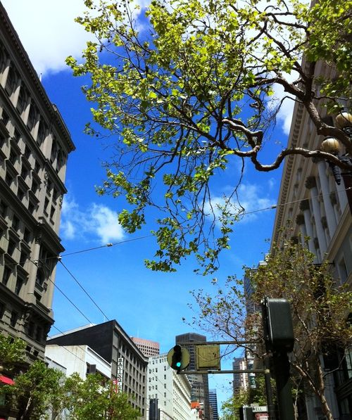 Downtown SF Spring