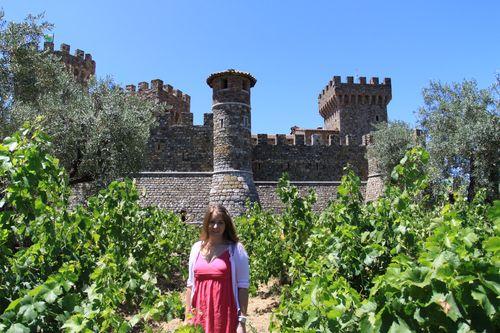 vineyard!